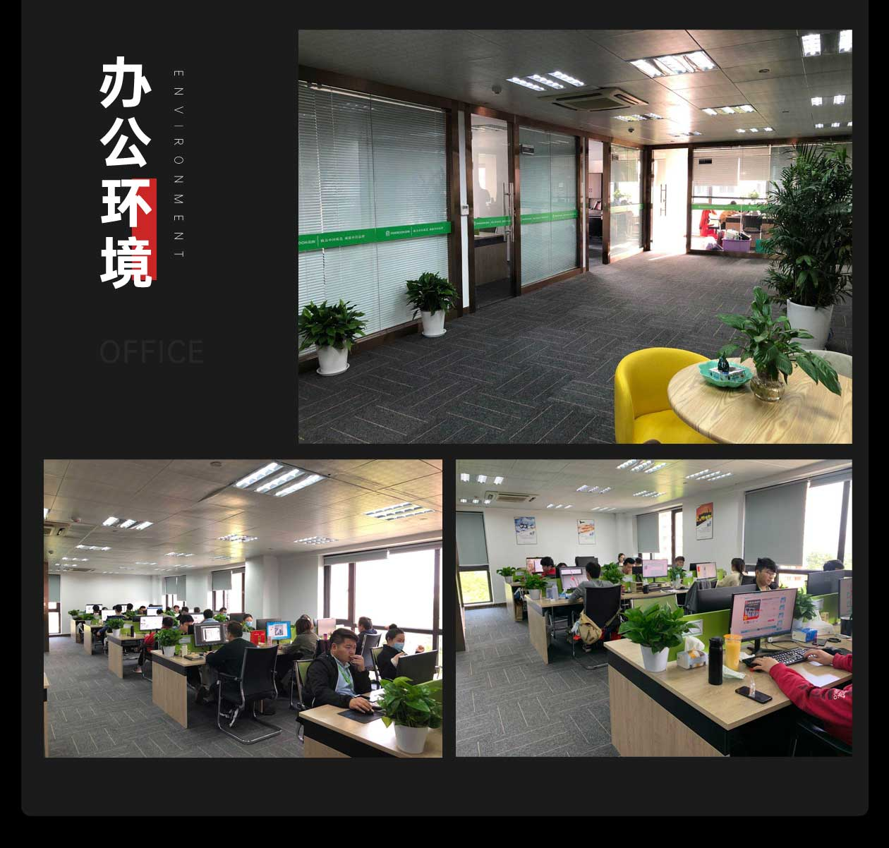 天猫代环球体育电竞app直播_14.jpg